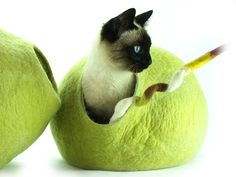 Cat Bed, House, Cave, Nap Cocoon, Igloo, 100% Handmade from sheep wool , Kivikis Size - Large, 6-8 kg (13-16 pounds) cat. *** Learn more by visiting the image link. (This is an affiliate link and I receive a commission for the sales)