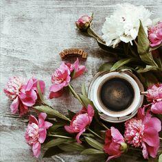 Доброе утро понедельника! Начинаем традиционно - с кофе и цветов ☕ Щуримся от солнца, едим клубнику вместо булок, берём на прогулку и шляпу, и зонт, не думаем о плохом, думаем о хорошем вчера и строим планы на непредсказуемое завтра  . Замечательного всем дня!
