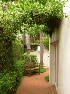 Vista do corredor lateral no sentido da entrada da casa. Atrás do banco, os arbustos médios são camélias (<i>Camellia japônica</i>), a cerca viva, rente ao muro, é tumbérgia arbustiva (<i>Thunbergia erecta</i>) e a parede à esquerda é forrada com unha-de-gato (<i>Uncaria tomentosa</i>). Projeto do escritório paulistano Grama e Flor