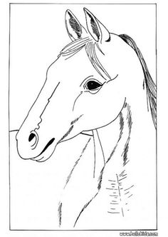 Horse Portrait Coloring Page Cute And Amazing Farm Animals For Kids More