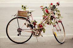vintage bicycle and flowers...
