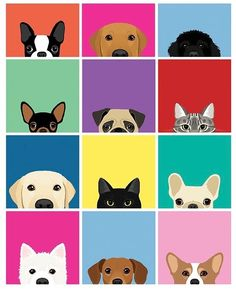 This is just part of a growing collection of peeking cats and dogs. If you would… This is just part of a growing collection of peeking cats and dogs. If you would like to see all of the available breeds, please send an email with your request. Pet Shop, Dog Wallpaper, Dog Illustration, Dog Paintings, Needlepoint Canvases, Dog Tattoos, Dog Art, Cute Dogs, Cute Animals
