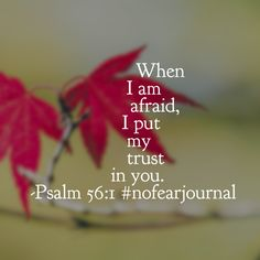 Choosing to trust God in the face of fear requires fortitude. But our God is worthy of our trust! Have a wonderful Wednesday believing it! #nofear #nofearjournal #biblereadingplan #biblereading