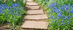 Awesome Most Wanted Walkways and Garden Path Design Stepping Stone Pathway, Stone Garden Paths, Brick Path, Garden Paving, Garden Stones, Path Design, Garden Design, Landscape Design, Hard Landscaping Ideas