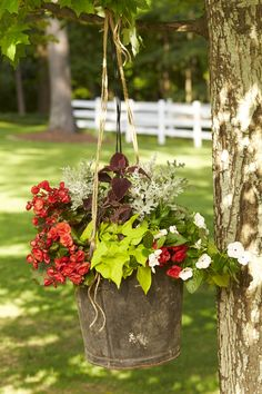 The key to this rustic aesthetic is not overplanting the container. Give the flowers space to breathe. This rusty metal bucket—a flea market find—is studded with periwinkles, Rieger begonias, coleus, and other annuals but not overcrowded, which can keep the plants from getting adequate light. Suspending the arrangement on a branch adds to the casual, easy-does-it charm.