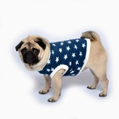 www.chezvalde.com Sweater - Blue Star Blue Sweaters, Star, Dogs, Clothing, Outfits, Pet Dogs, Doggies, Outfit Posts, Stars