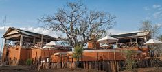 20/6/2016 Azura Selous - Selous Game Reserve Azura Selous is a luxurious camp nestled in the banks of the Ruaha River in the great Selous Game Reserve. The Selous is one of the last untouched wilderness in Africa and the Azura Selous can offer the best opportunity for exploring this amazing reserve.