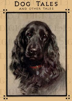 DOG TALES Vintage Dog Illustration. Dog by DandDDigitalDelights