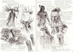 Nandor Elves studies by TurnerMohan