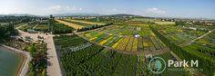 Produkcją roślin zajmujemy się od pokoleń. Ponad 35 ha produkcji