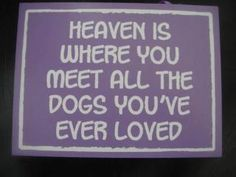 all dogs go to heaven Animal Quotes, Dog Quotes, Qoutes, Baby Dogs, Dogs And Puppies, Doggies, I Love Dogs, Puppy Love, Rambo 3