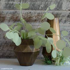 Vellum Eucalyptus