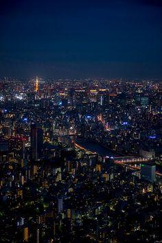 Tokyo Night #japan #tokyo