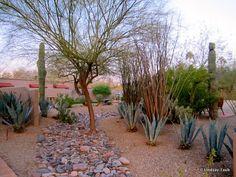 Scottsdale, Arizona. (Hermosa Inn)