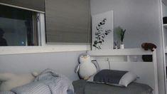 Zoom background TAEYONG room Ide dekorasi kamar Ide apartemen Ruangan