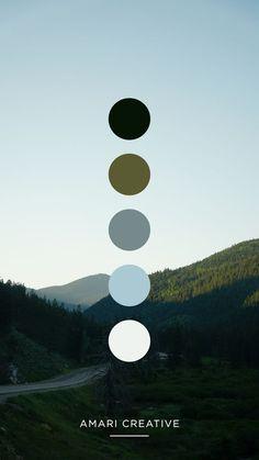 Color Schemes Colour Palettes, Colour Pallete, Website Color Palette, Blue Skies, Color Swatches, Color Shades, Color Theory, Color Inspiration, Tree Tech
