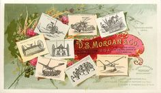 D. S. Morgan & Co Farm Implement Trade Card. Brockport NY. Chicago IL