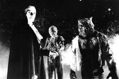 13 More Strange Horror Facts