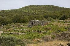 """Sicilia,isola di Pantelleria, """"il dammuso"""",tipica cotruzione isolana con il tetto a conca per la raccolta di acqua piovana."""
