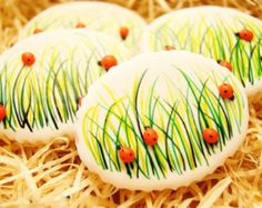 Hand decorated, handmade LADYBIRD, Spring, Easter cookies