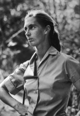 British anthropologist and primatologist Jane Goodall. (September 27, 1974)