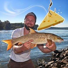 guide to fishing Going Fishing, Fishing Tips, Fishing Lures, Carp, Cheese, Men's Fashion, Outdoor, Fitness, Fishing Jig