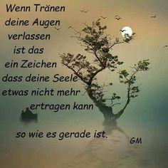 Zum nachdenken - New Ideas German Quotes, German Words, Words Of Comfort, Stress Disorders, My Mood, Favorite Quotes, Depression, Real Life, Love Quotes