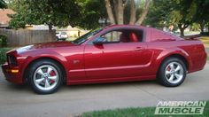 2011 Ford Mustang, Bmw, Cars, Autos, Car, Automobile, Trucks