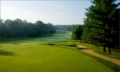 Pilgrim's Run Golf Club :: West Michigan's Finest Public Golf Course, Pierson, Michigan