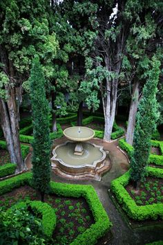 symmetry, fountain and trees