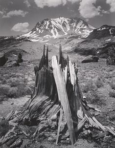 1949 Mount Lassen from the Devastated Area, Lassen Volcanic National Park, California by Ansel Adams