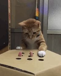 Discover & share this Whack A Mole GIF with everyone you know. GIPHY is how you search, share, discover, and create GIFs. Cute Cats And Kittens, Cool Cats, Cat Meow Meaning, Funny Cats, Funny Animals, Kitten Meowing, Gif Animé, Funny Cat Pictures, Cat Gif