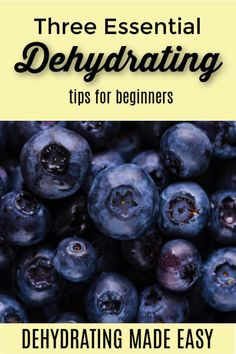 When you are new to dehydrating, there seems to be a lot of rules. These three dehydrating tips for beginners will set you on the path to success. Fruit Recipes, Real Food Recipes, Low Acid Recipes, Making Jerky, Emergency Food Storage, Long Term Food Storage, Freeze Drying Food, Food Hacks, Food Tips