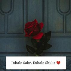 Islamic Qoutes, Islamic Teachings, Islamic Inspirational Quotes, Arabic Quotes, Allah Quotes, Prayer Quotes, Quran Quotes, Wisdom Quotes, One Line Quotes
