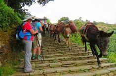 Nepal Trekking; Himalayas Hiking in Nepal for Women: Photos   #adventure #travel #adventuretravel #wanderlust #women #travelling #inspiration #tourism #ecotoursim