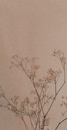 beige wallpaper in 2021 | Beautiful wallpapers backgrounds, Abstract wallpaper design, Minimalist wallpaper