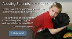 "Assisting Students in the Classroom - Facility dog SSD Jasmine's presence in the classroom has made a huge difference. Learn more - ""The confidence of the students in the hallway when they're walking with her is incredible!"" - Gina and SSD Jasmine II"