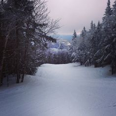 Lower Antelope adventures! #skiing #madriverglen #vermont