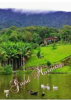 In today's post, we are going to present romantic good morning quotes and messages. If you are looking for romantic good morning quotes and messages, then you have come to the right place.