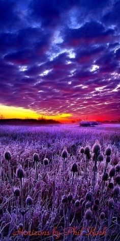 Horizons by Phil Koch via meetyoursweet.com