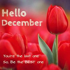 1000+ images about Months of the Year on Pinterest | Hello ...Hello December Make My Wishes Come True