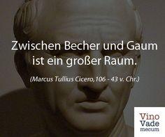 Cicero über Wein. Mehr Zitate findest Du unter https://www.facebook.com/media/set/?set=a.684622584947841.1073741829.575864502490317