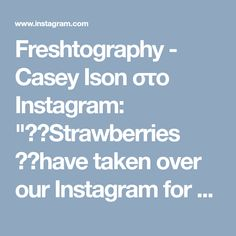 """Freshtography - Casey Ison στο Instagram: """"🍓🍓Strawberries 🍓🍓have taken over our Instagram for ❤️❤️Valentine's Day!❤️❤️ ⠀⠀⠀⠀⠀⠀⠀⠀⠀ Click on our username 🌱Fresh_tography 🌱(top left) to…"""""""