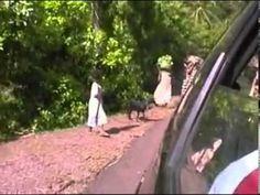 Comoros Island  OWA OWA