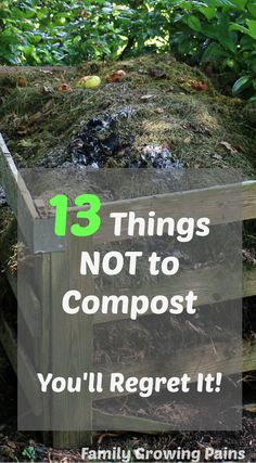 A compost bin is necessary for vegetable gardening and growing your own food. Even homesteaders with small scale farms can have a compost! Composts add vital nutrients back into your soil, increasing your harvest, but you don't want to put these 13 things Diy Garden, Garden Soil, Herb Garden, Garden Landscaping, Landscaping Ideas, Raised Garden Bed Soil, Cedar Garden, Garden Seeds, Garden Boxes