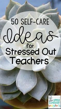 Find 50 Self-Care Ideas for Stressed Out Teachers in this post by The Teacher Next Door. This list of self-care ideas will help teachers decrease their stress while re-charging. Elementary Teacher, Upper Elementary, Elementary Education, Teacher Morale, Staff Morale, Self Care Activities, Stem Activities, Teacher Hacks, Teachers