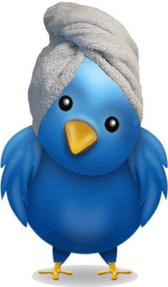 Tweet, tweet! What's all the chirping about? Check out our tips on how to promote your spa biz on Twitter! #spa #smallbiz
