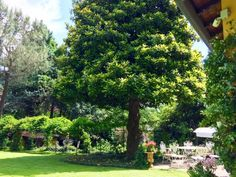 Vendita Villa in via Cadorna 12 Monticello Brianza. Ottimo stato, posto auto…