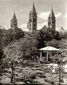 Rózsakert 1960-70 Old Pictures, Historical Photos, Cathedral, Building, Travel, Historical Pictures, Antique Photos, Viajes, Buildings