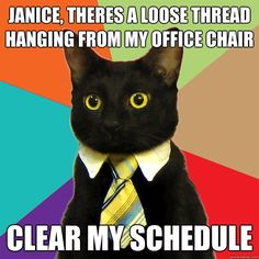 Janice, there's a loose thread hanging from my office chair; clear my schedule.
